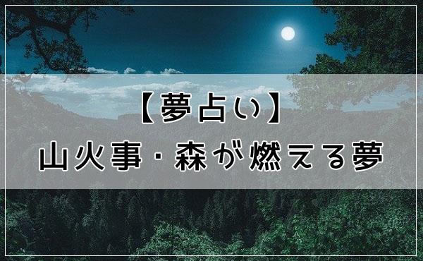 【夢占い】山火事・森が燃える夢
