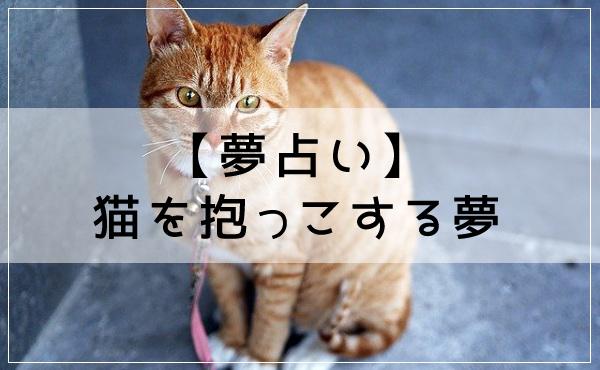 【夢占い】猫を抱っこする夢