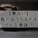 【夢占い】猫が出てくるのはどんな意味?行動や状態別に夢診断
