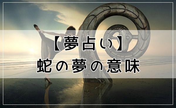 夢占いの定番!蛇の夢の意味
