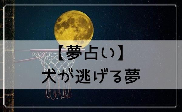 【夢占い】犬が逃げる夢