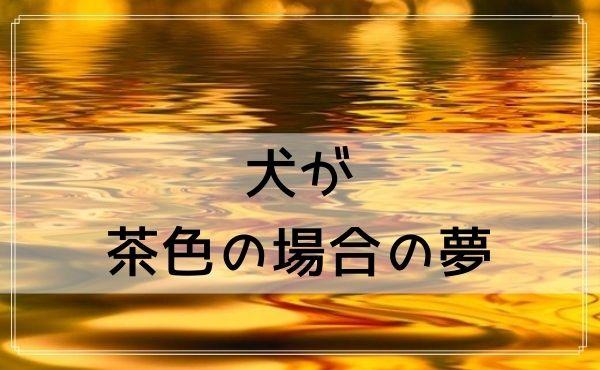 【夢占い】犬が茶色の場合の夢