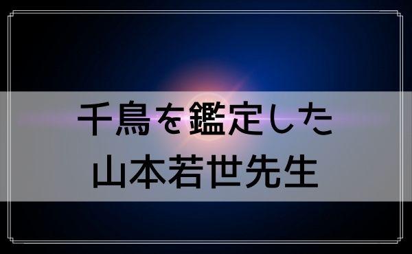 埼玉の占いは千鳥を鑑定した山本若世先生(Green Essence)がおすすめ!
