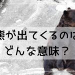 【夢占い】熊が出てくるのはどんな意味?熊の行動や状態別に夢診断