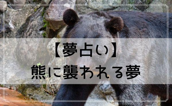 【夢占い】熊に襲われる夢
