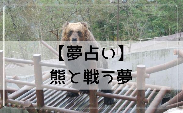 【夢占い】熊と戦う夢