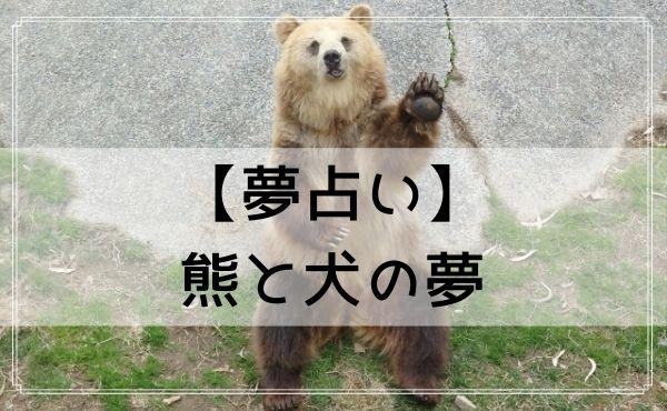 【夢占い】熊と犬の夢