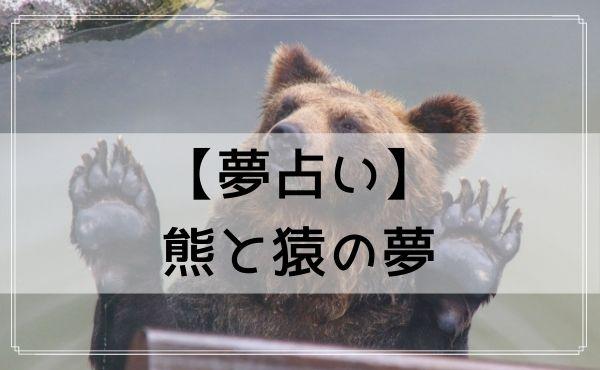 【夢占い】熊と猿の夢