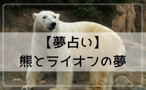 【夢占い】熊とライオンの夢