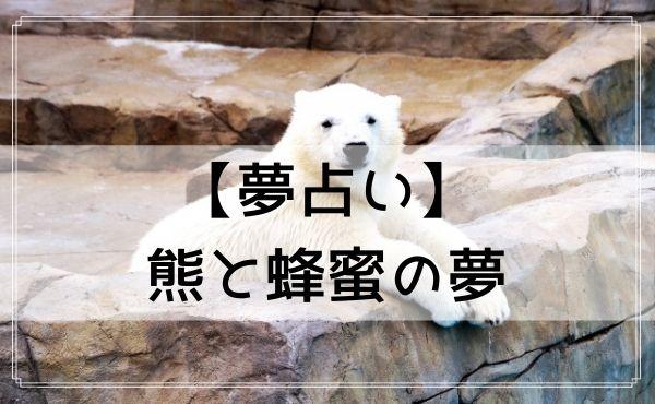 【夢占い】熊と蜂蜜の夢