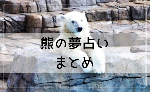 熊の夢占いまとめ