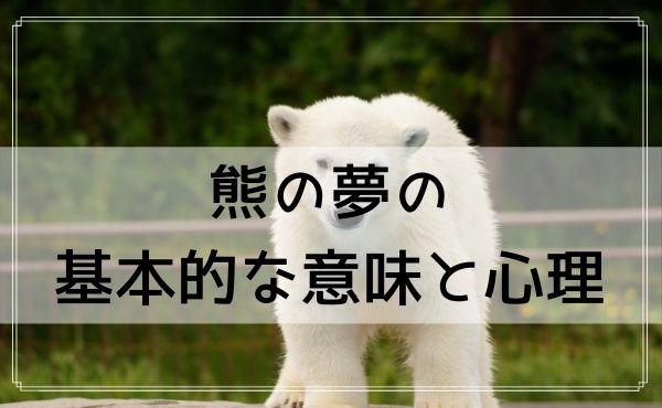 【夢占い】熊の夢の基本的な意味と心理