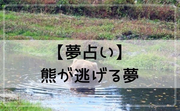 【夢占い】熊が逃げる夢