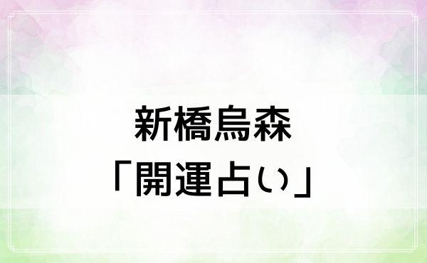 新橋烏森「開運占い」はよく当たると評判!