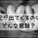 【夢占い】蛇が出てくるのはどんな意味?蛇の状態や行動別に夢診断