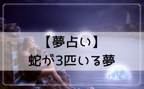 【夢占い】蛇が3匹いる夢