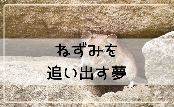【夢占い】ねずみを追い出す夢