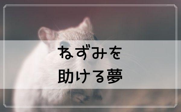 【夢占い】ねずみを助ける夢