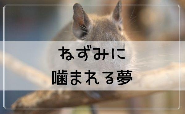 【夢占い】ねずみに噛まれる夢