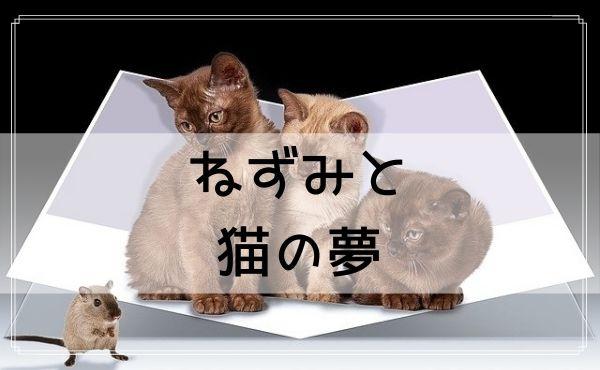 【夢占い】ねずみと猫の夢