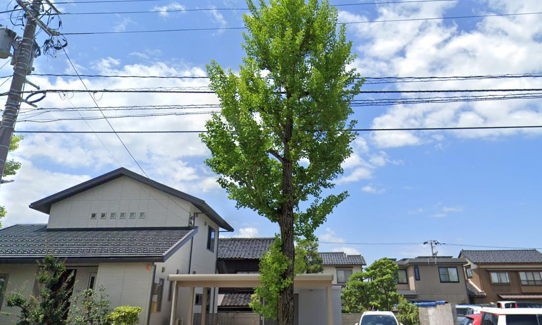 富山の占い師「内田さん」内田湖亥先生