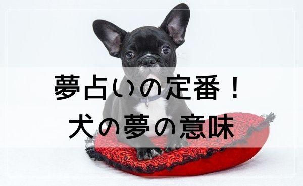 夢占いの定番!犬の夢の意味