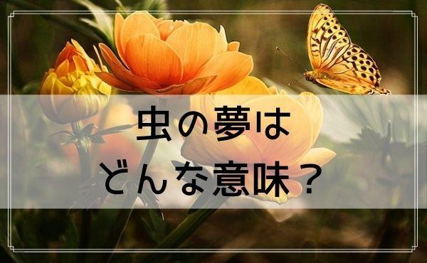 【夢占い】虫の夢はどんな意味?状況や行動別に夢診断