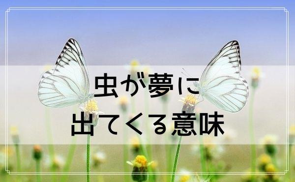 虫が夢占いに出てくる意味と基本的心理