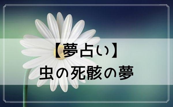 【夢占い】虫の死骸の夢