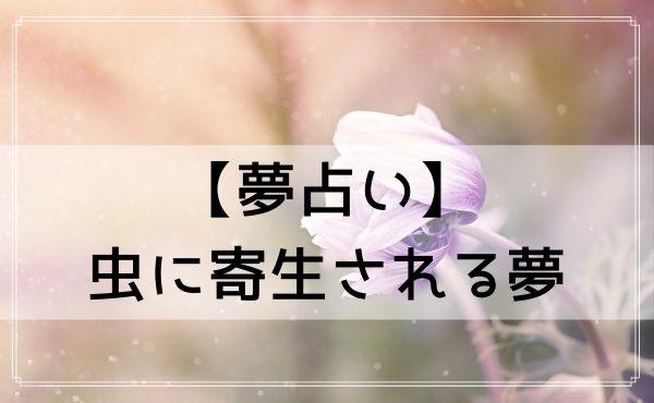 【夢占い】虫に寄生される夢