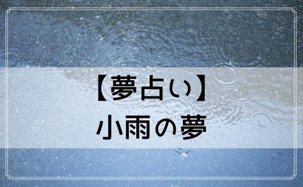 【夢占い】小雨の夢