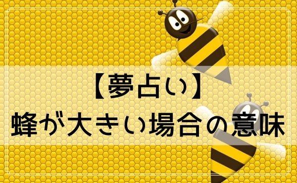 【夢占い】蜂が大きい場合の意味