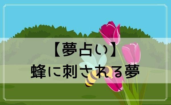 【夢占い】蜂に刺される夢