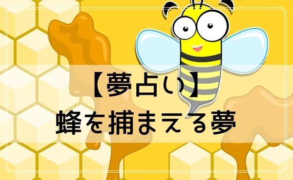 【夢占い】蜂を捕まえる夢