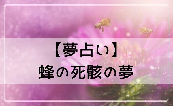 【夢占い】蜂の死骸の夢