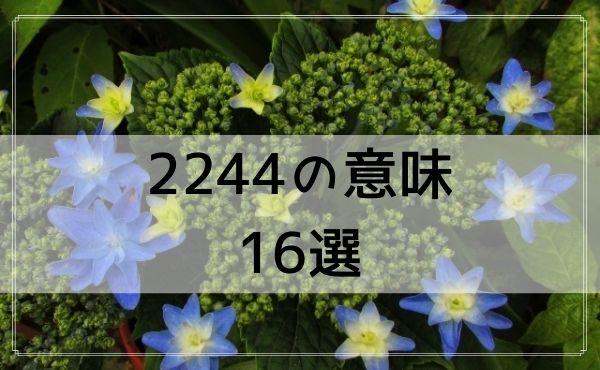 2244のエンジェルナンバーの意味 16選