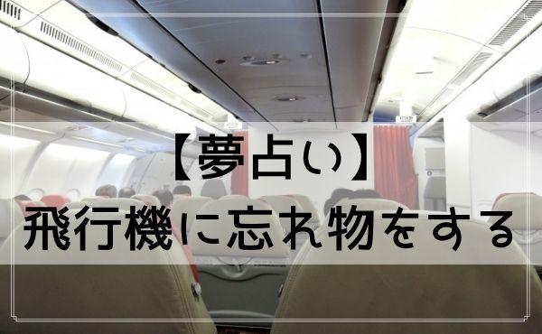 【夢占い】飛行機に忘れ物をする夢